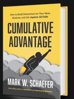Cumulative advantage book