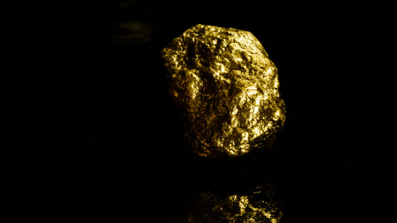 The-Secret-Gold-Mine-In-Your-Business-with-John-Highly
